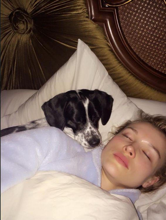 Gwiazdy w łóżku o poranku