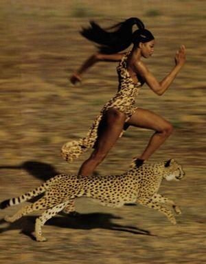 Campbell ujeżdza aligatora, ściga sie z gepardem ...
