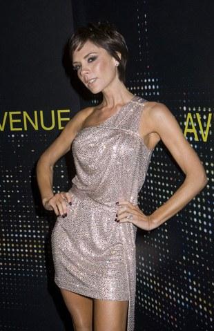Victoria Beckham użyczy głosu bohaterce kreskówki