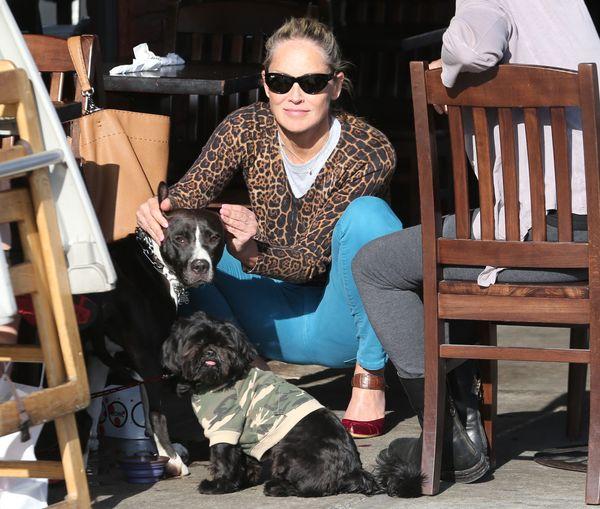 Aktorka zabra�a swoje psy na lunch (FOTO)