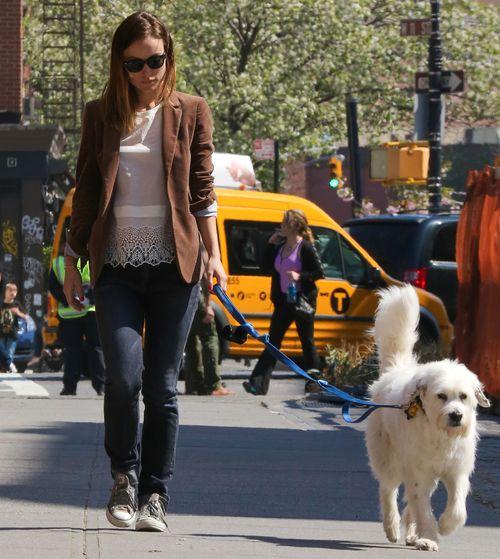 Olivia Wilde na spacery chodzi z czworonożnym pupilem (FOTO)