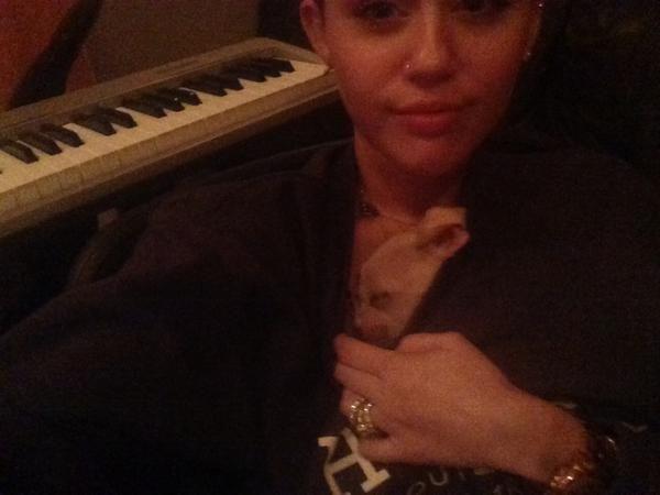 Poznajcie Beana - nowego pupila Miley Cyrus (FOTO)
