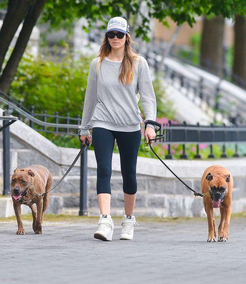 Kto chodzi na spacery z taką obstawą? (FOTO)