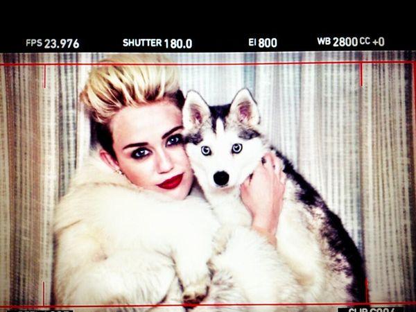 Miley Cyrus ze swoim pupulem (FOTO)