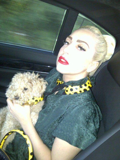 Kogo Lady Gaga uczy rysować?