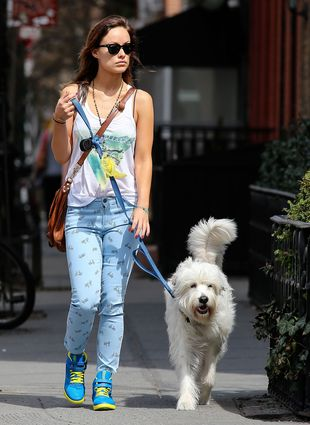 Kolorowa Olivia Wilde na spacerze (FOTO)