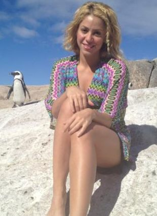 Shakira została zaatakowana przez lwa morskiego (FOTO)