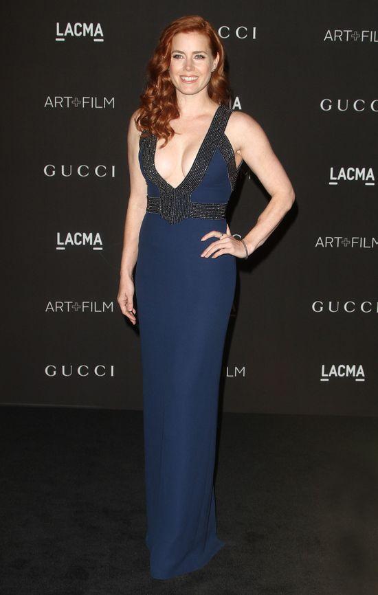 Amy Adams na gali Alma 2014