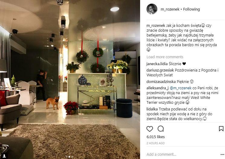 Rozenek-Majdan pokazała świąteczny salon, ale coś tu nie gra (Instagram)