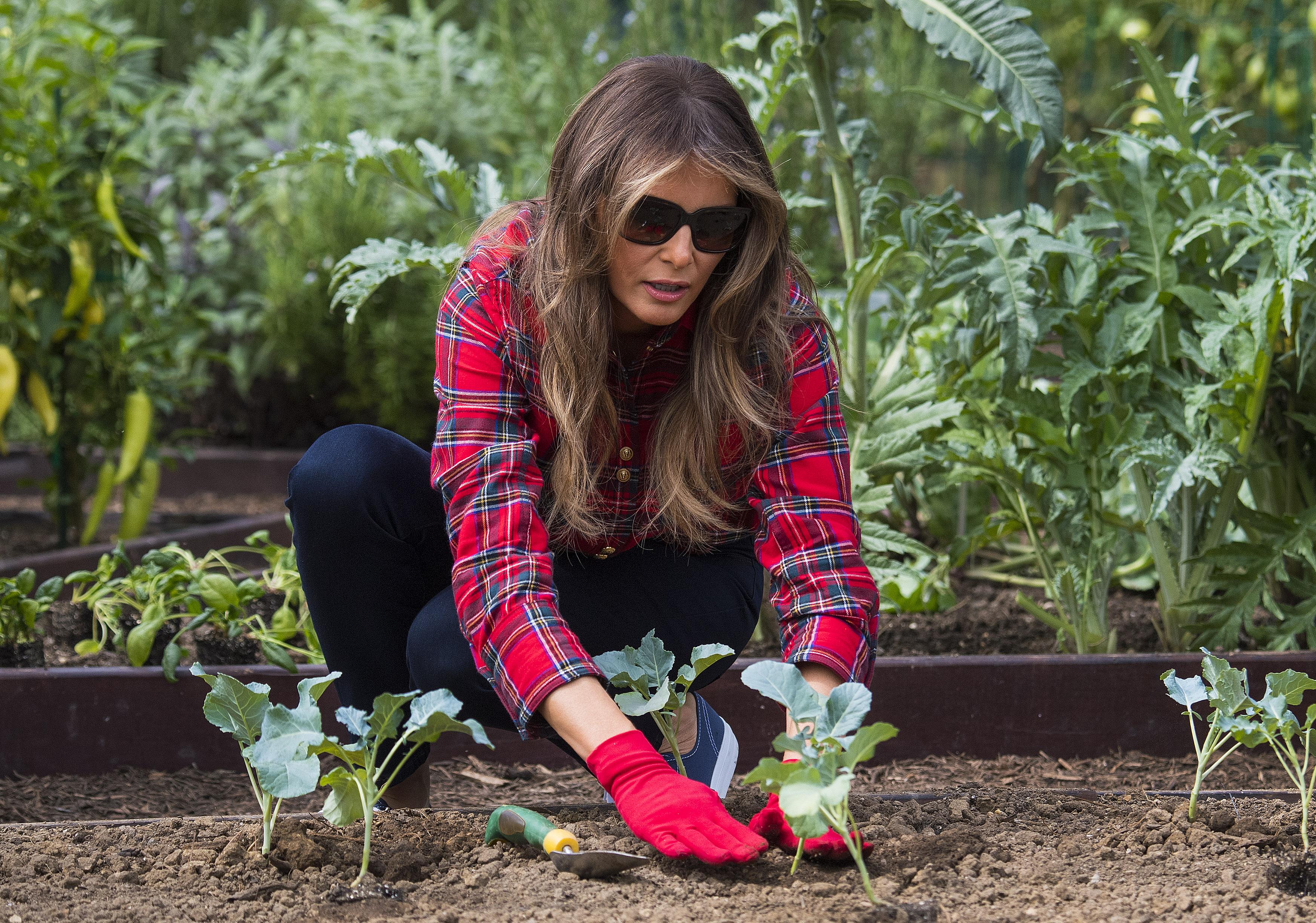 Melania Trump pracuje w ogrodzie, a wszyscy patrzą na jej BUTY