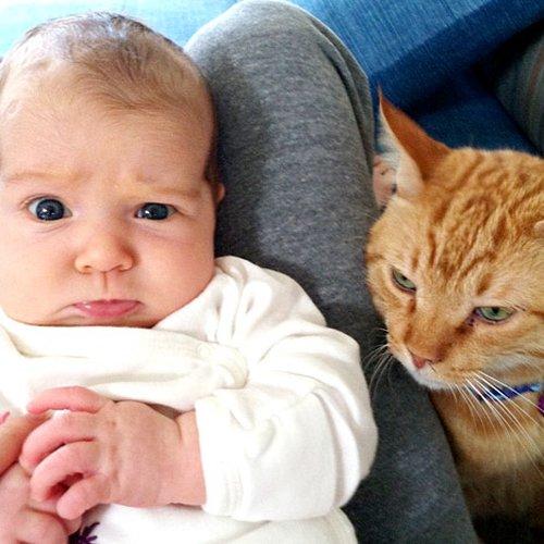 Czyj to słodki maluch? (FOTO)