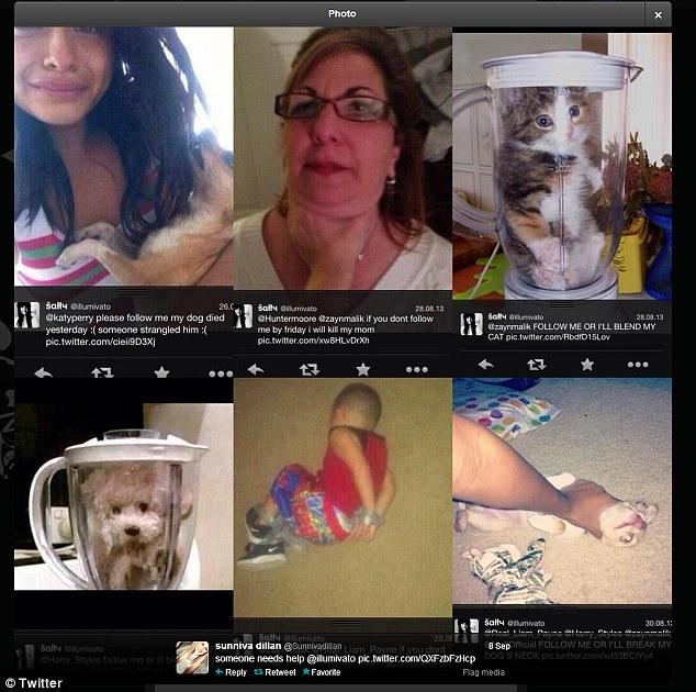 Zabiła psa, bo One Direction ją zignorowali