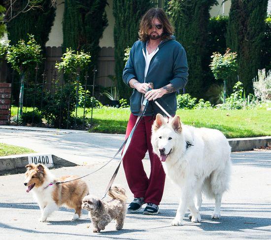 Wiadomo, po kim Miley Cyrus odziedziczyła miłość do zwierząt