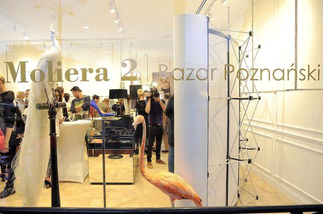 Celebrytki na otwarciu butiku Moliera 2 w Poznaniu (FOTO)