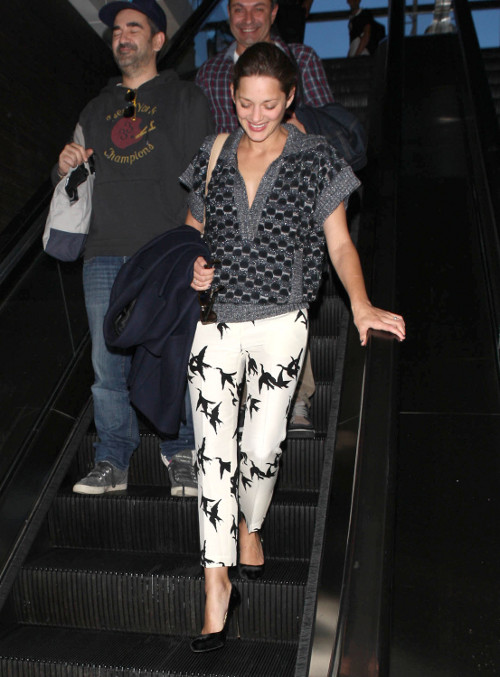Marion Cotillard przylecia�a do Los Angeles...
