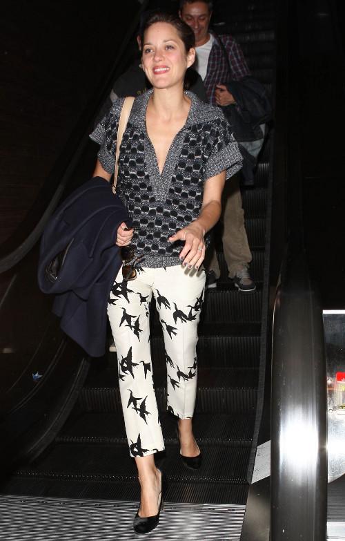 Marion Cotillard przyleciała do Los Angeles...