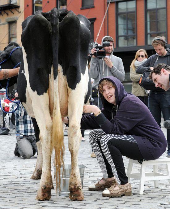 Lena Dunham doiła krowę na Manhattanie! (FOTO)