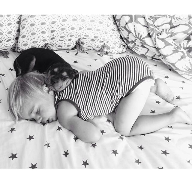 Theo i Beau - nowe gwiazdy internetu (FOTO)