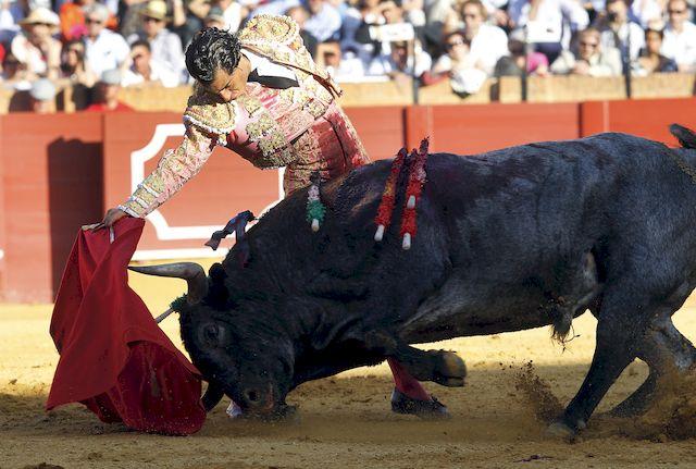 PRZERAŻAJĄCA śmierć na corridzie! Matador nie miał szans