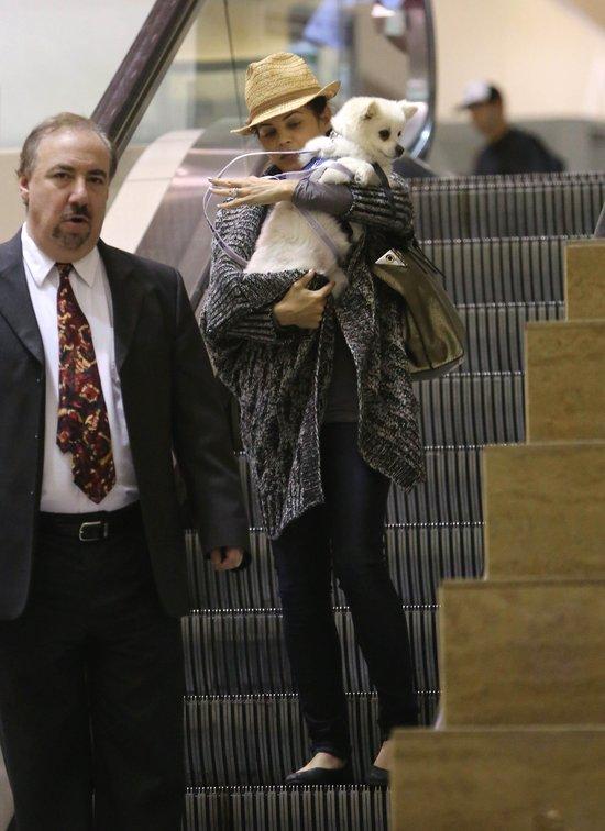Wypoczęta Jenna Dewan z psem na lotnisku (FOTO)