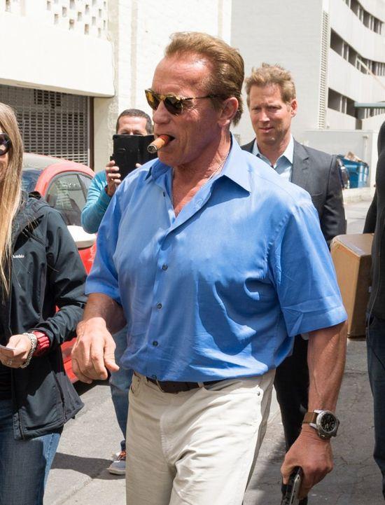 Arnold Schwarzenegger został zaatakowany przez... SŁONIA!