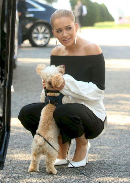 Urocze! Rita Ora nie mogła sięoprzeć, kiedy zobaczyła... (FOTO)