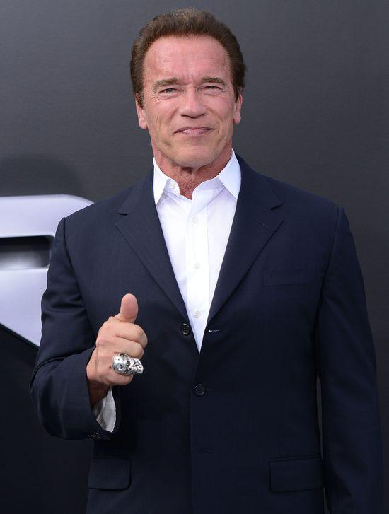 Nie�lubny syn Schwarzeneggera. Takie ciacho jak Patrick?