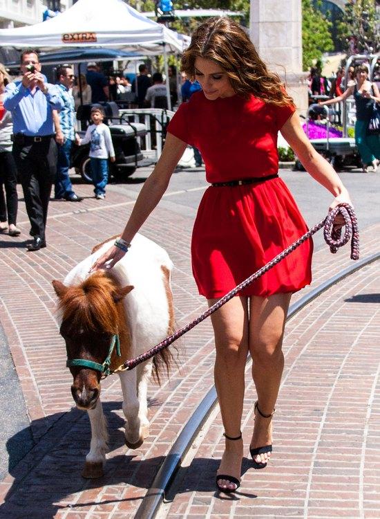 Maria Menounos na spacerze z... kucykiem (FOTO)