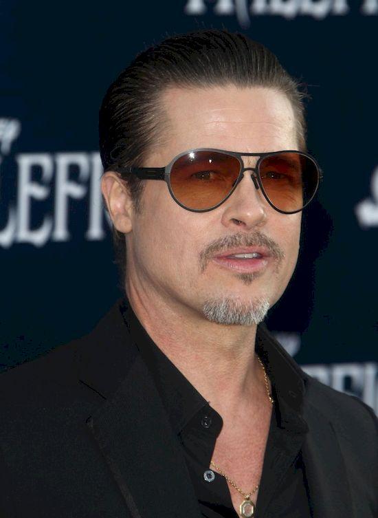 Brad Pitt zosta� oskar�ony o zn�canie si� nad dzie�mi?!