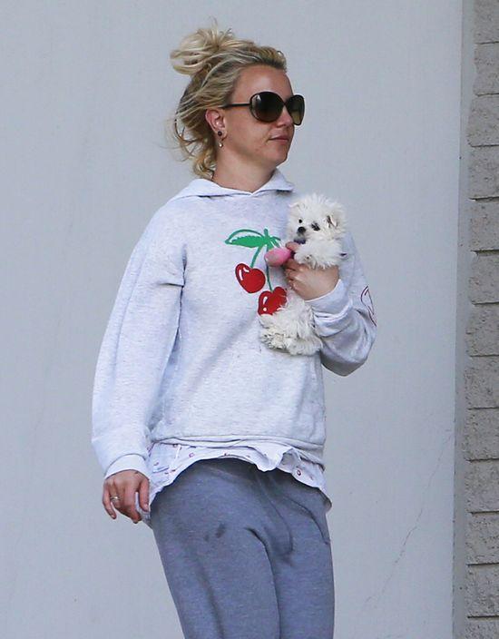 Britney Spears ma nowego chłopaka?