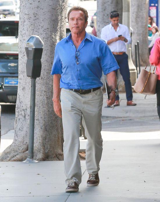 Wow! Leonardo DiCaprio i Arnold Schwarzenegger przekazali fortunę na...
