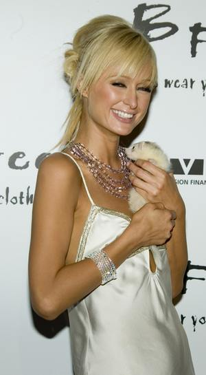 Paris Hilton za kratkami?