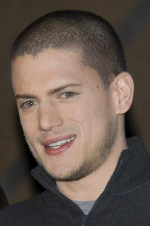 Wentworth Miller - facet idealny?