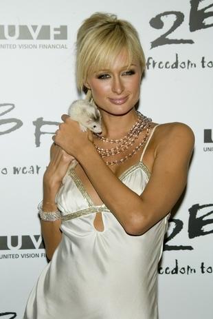 Paris Hilton listy pisze