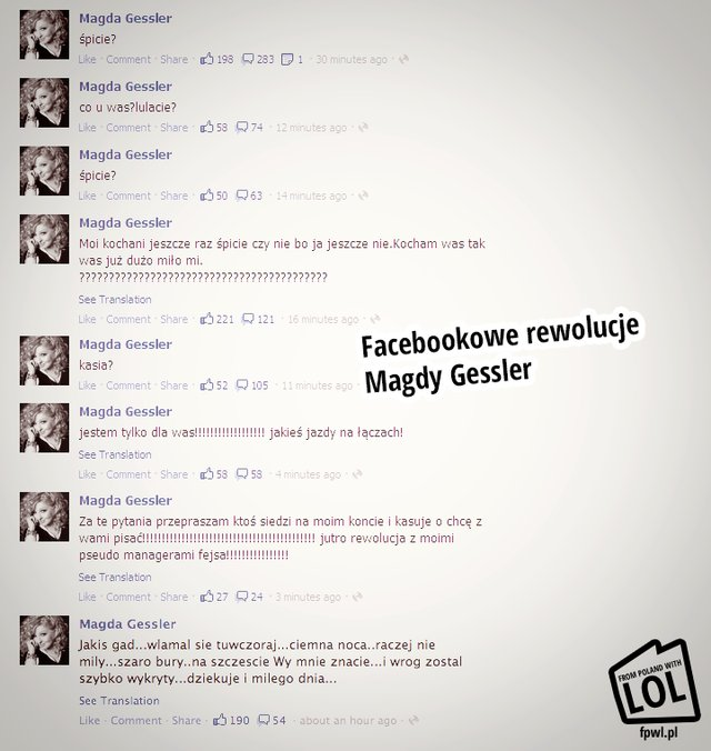Szaro-bury gad na Facebooku Magdy Gessler