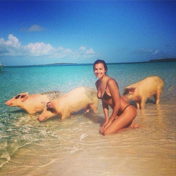 Dziewczyna Cristiano Ronaldo pływa ze świniami! FOTO+VIDEO
