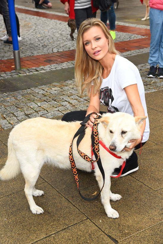 Joanna Krupa na czele pochodu miłośników psów (FOTO)