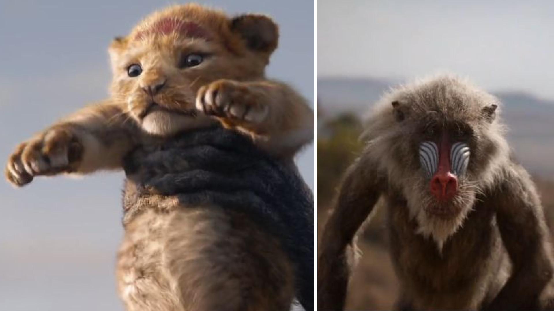 HIT – w ciągu 8 godzin trailer nowego Króla Lwa miał 5 milionów odtworzeń