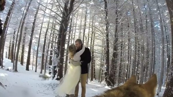 To był naprawdę MAGICZNY ślub [VIDEO]