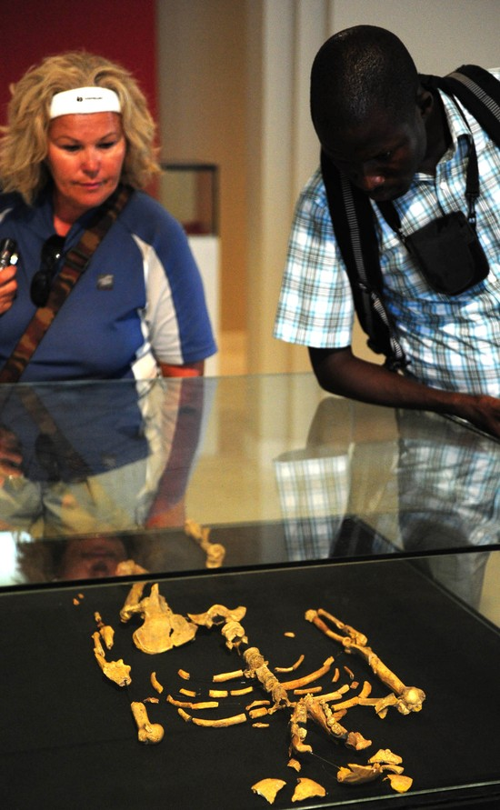 Kim jest Lucy Australopithecus?