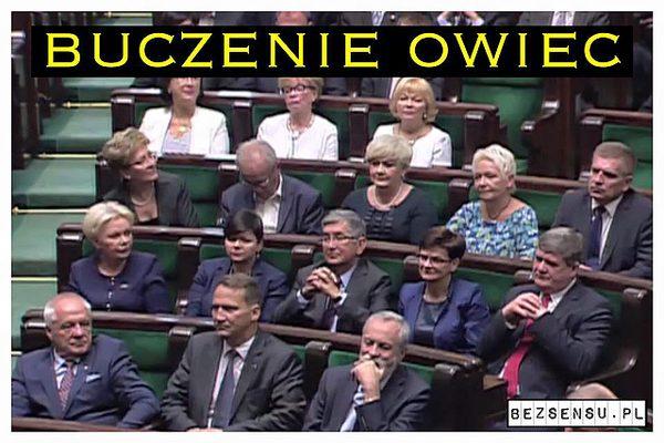 Memy po zaprzysiężeniu Andrzeja Dudy