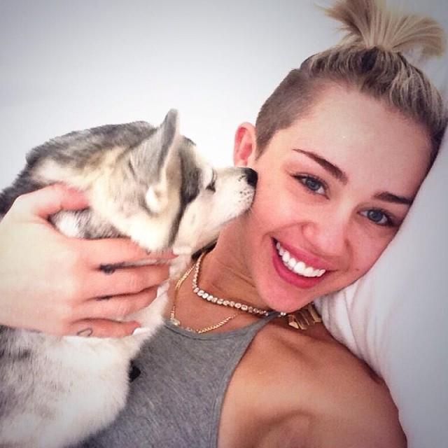 Świeża i naturalna Miley Cyrus bawi się z psami