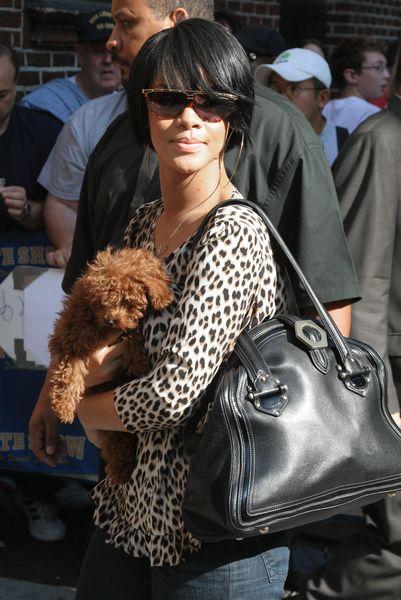 Rihanna w panterce (FOTO)