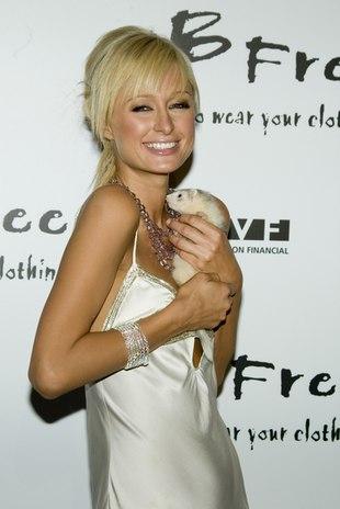 Paris Hilton kończy dziś 31 lat
