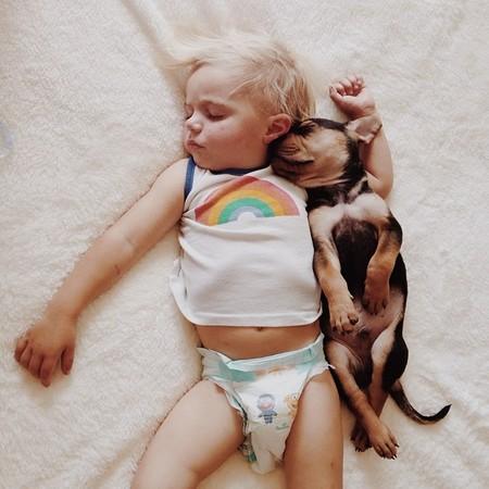 Theo i Beau - gwiazdy internetu mają siostrzyczkę (FOTO)