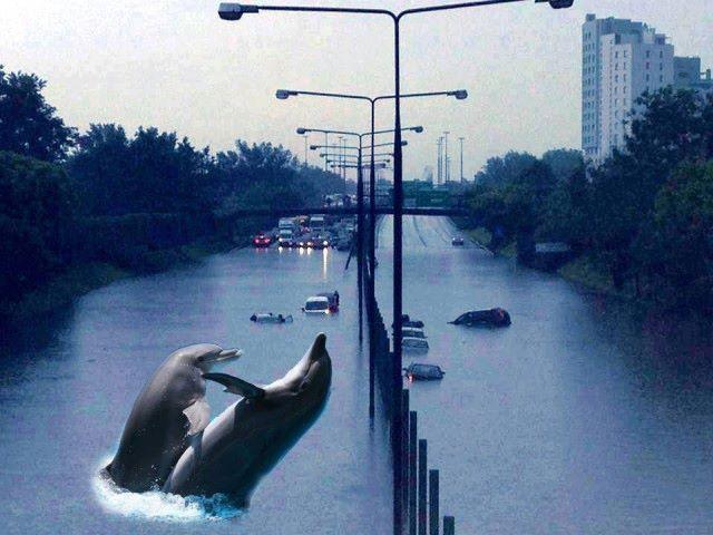 Internauci nabijają się nawet z powodzi (FOTO)