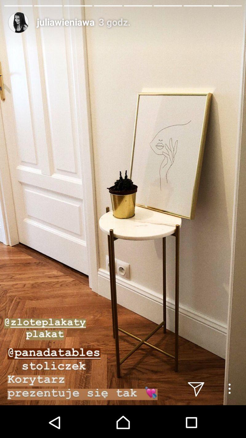 Julia Wieniawa TAK urządziła swój SALON (Instagram)