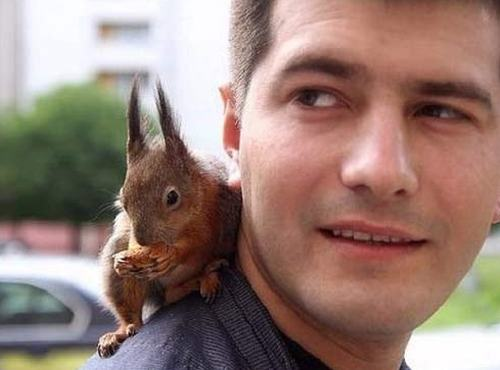 Wzruszająca historia.. wiewiórki znalezionej przez żołnierza