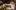 Wigilia w Radomiu – żenada roku? (VIDEO)