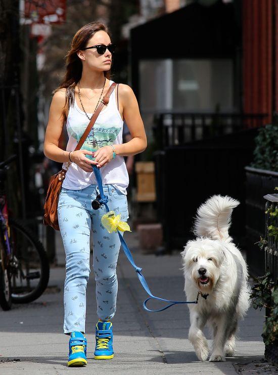 Kolorowa Olivia Wilde na spacerze